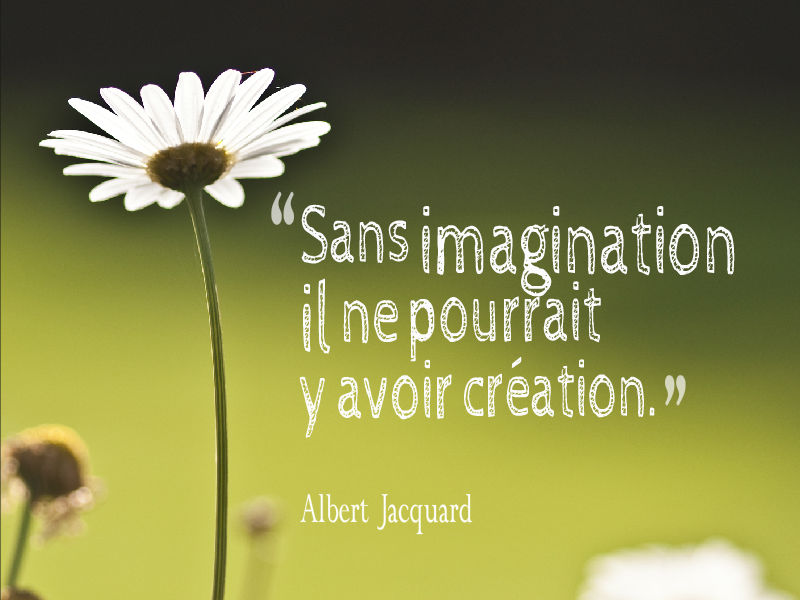 creativite-citations-positives