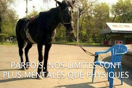 Parfois nos limites sont plus mentales que physiques ... dans Citations, proverbes... ChainesEsprit